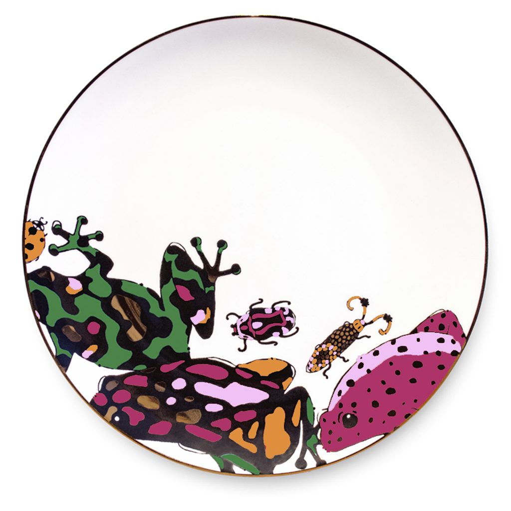 colourful frog print fine bone china breakfast plate house of hopstock